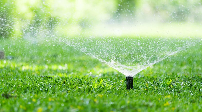 What-Is-Irrigation-And-Why-Is-It-Important-The-Complete-Definition