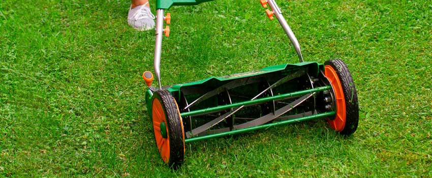 Reel-Lawn-Mower