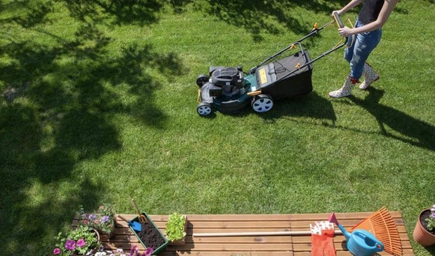 Lawn Care Rental Property