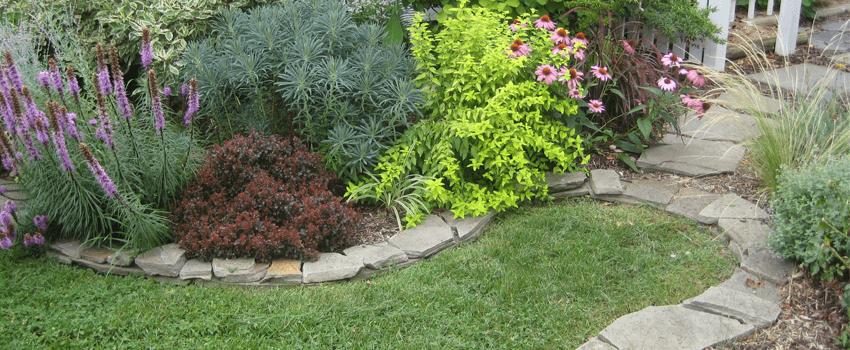 front yard garden border