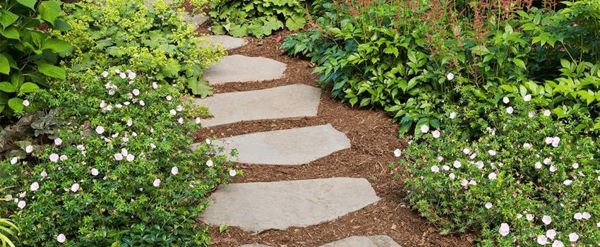 front yard garden path