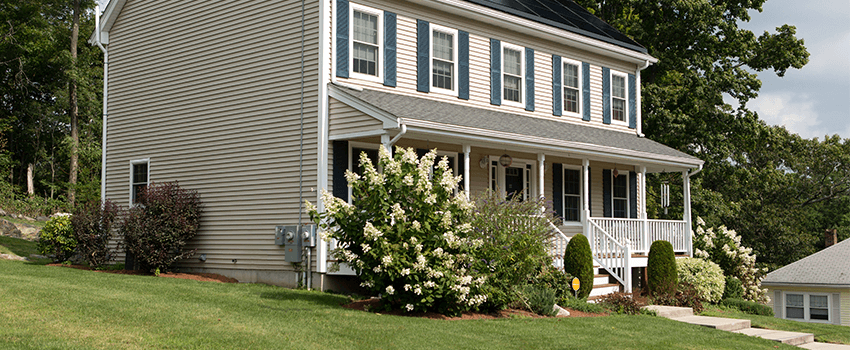 front yard hydrangeas