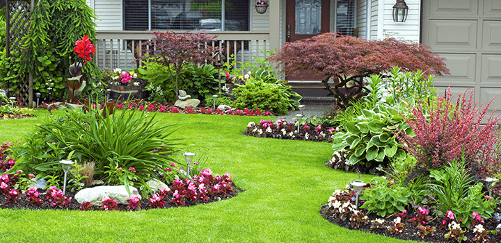 front yard landscaping and garden ideas